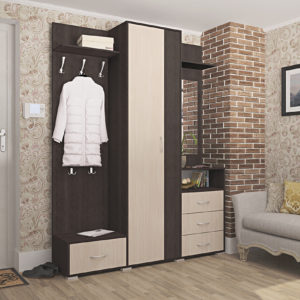 Мебель для прихожей Вита-4 Дуб молочный Дуб венге